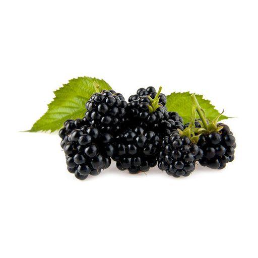 Szeder Gyümölcsfagylaltpor  2,04 kg/cs