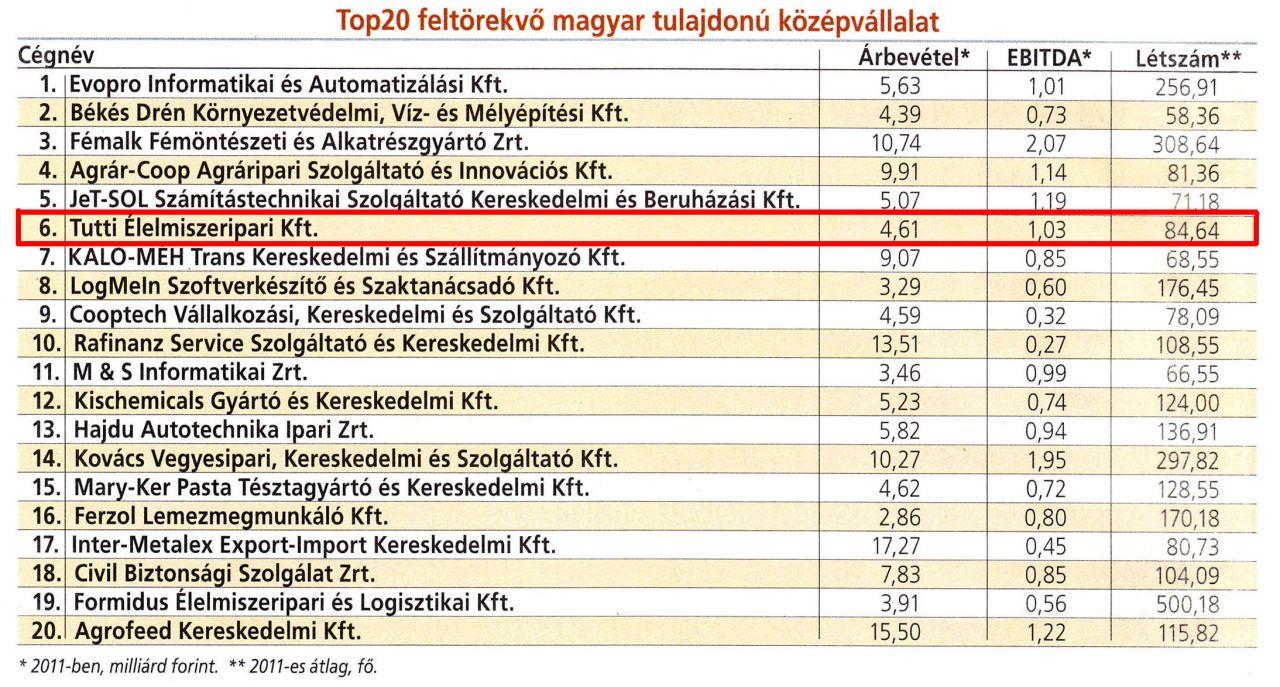Top20 feltörekvő magyar tulajdonú középvállalat
