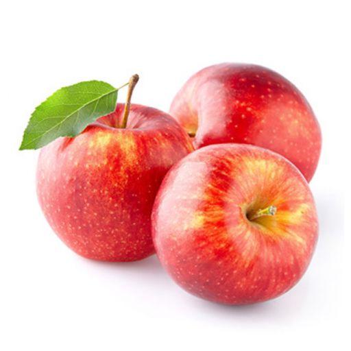 AppleFruitIce-CreamPowder2,04kg/bag